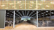 Agricultural Building Specialists | Robsons Structures Ltd